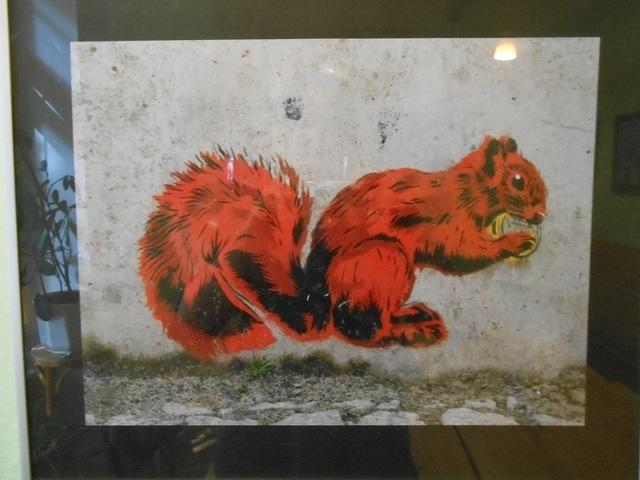 DE Berlin squirrel