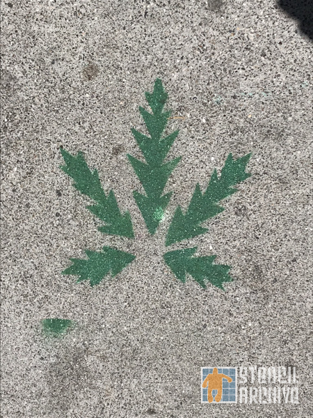 SF Upper Haight pot leaf