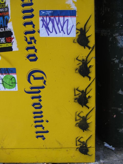 SFUHaight_Spiders