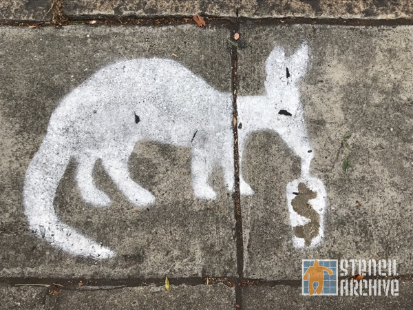 SF Western Addition anteater