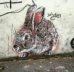 Adey WCA Paris 13th rabbit