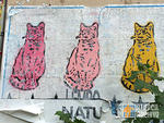 Lembo 3 cats wheatpaste