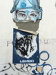 Lembo cat wheatpaste