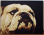 UK_Penny_bulldog