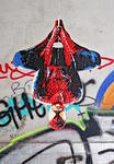 Marshal Arts Hamburg spiderman