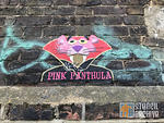 UK London Brick Ln Pink Panthula on paper