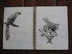 ScottWilliams_CaliforniaGlory_sketchbook14