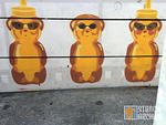 FNNCH Honey Bears in sunglasses