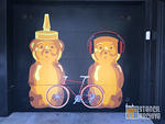 fnnch honey bears and bike