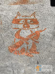 SF Mission militant raccoon