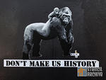 SF Mission polar bear gorillas dont make us history