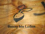 Bunny bin Laden small NYC