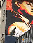 Shepard Fairey SF Chavez Mural cut out